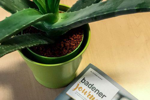 Das neue Badener Journal ist da!