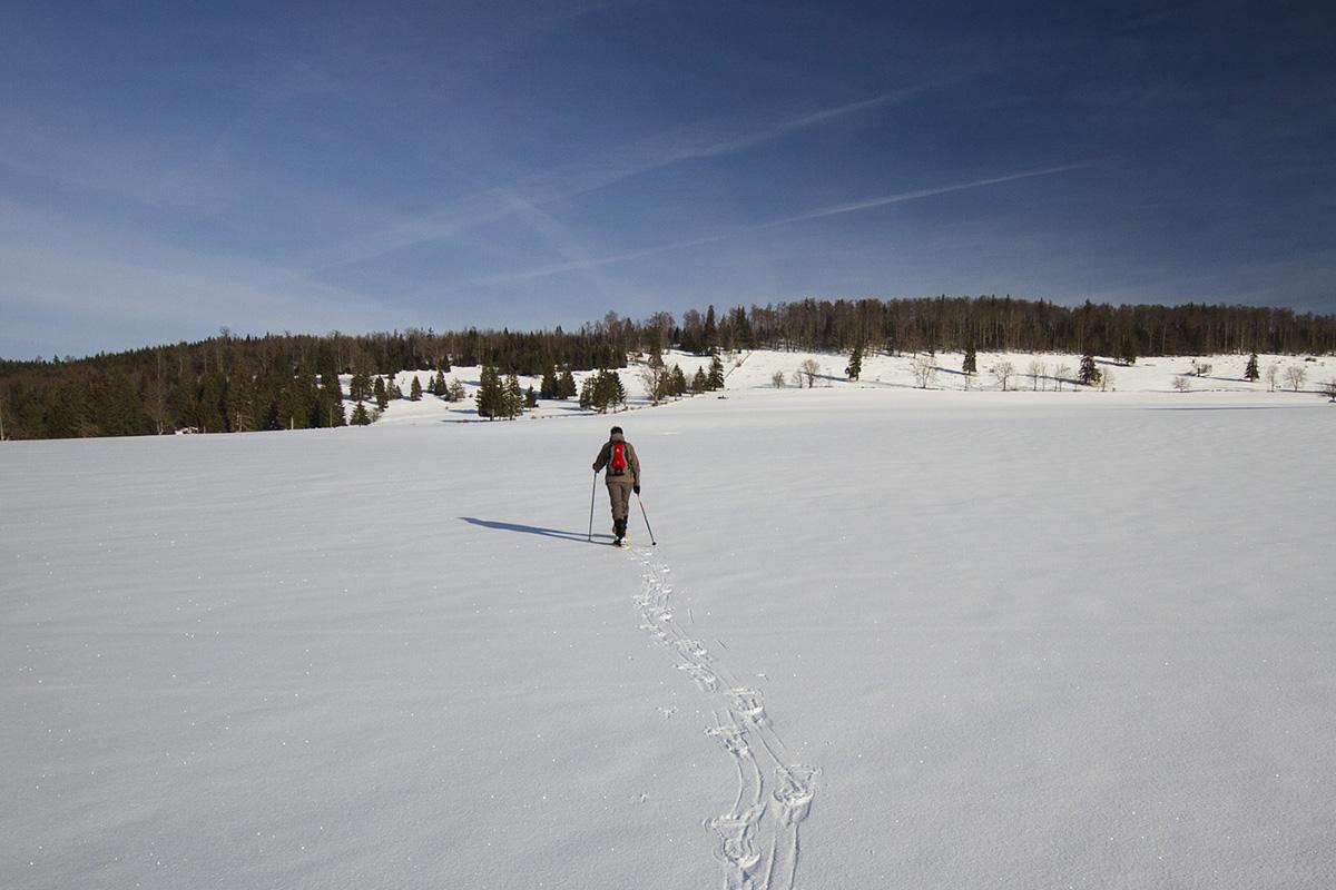 Schneeschuhwandern Copyright: Pixabay