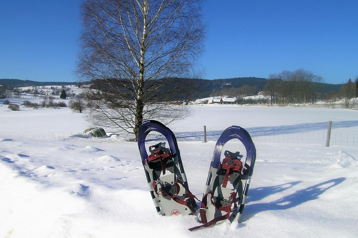 Schneeschuhwandern rund um das Moorheilbad Harbach