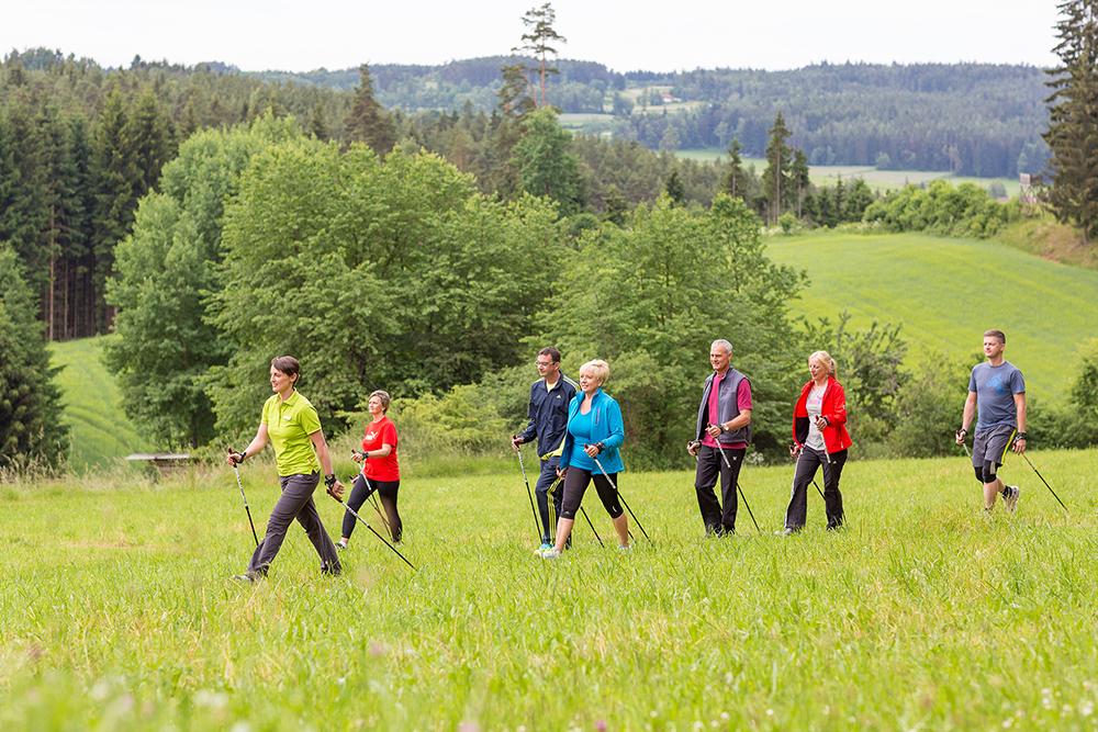 Bewegungstherapie Nordic Walking